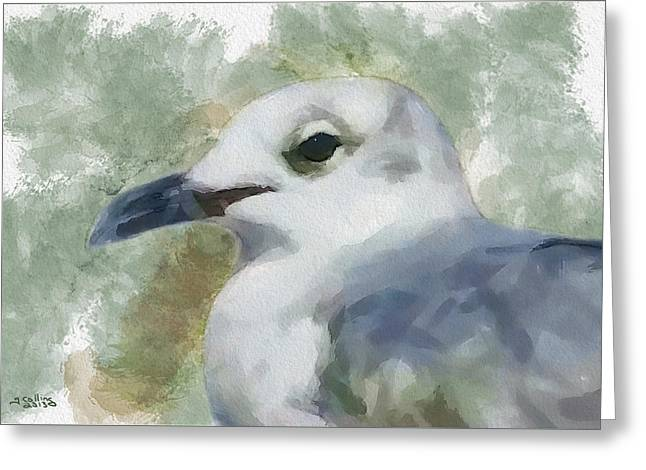 Greeting Card featuring the painting Seagull Closeup by Greg Collins