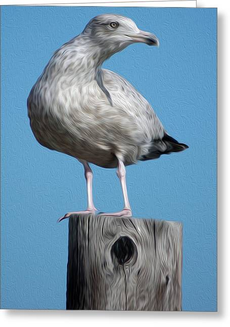 Greeting Card featuring the digital art Seagull by Kelvin Booker