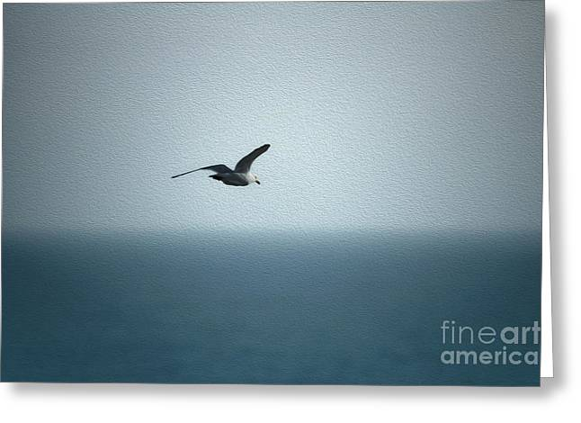 Seagull Greeting Card by Nur Roy
