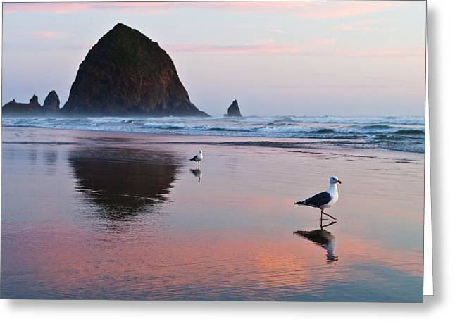 Seagulls And Haystack Rock Greeting Card