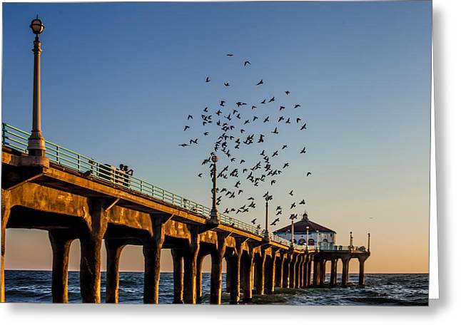 Seagulls At The Pier Greeting Card