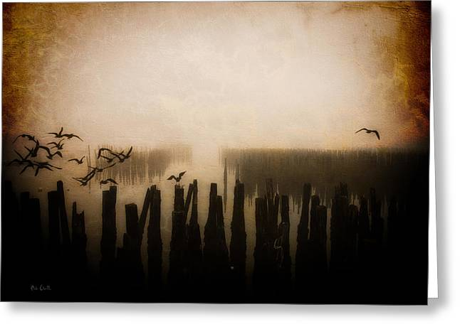 Seagulls Of Old Pilings Portland Maine Greeting Card by Bob Orsillo