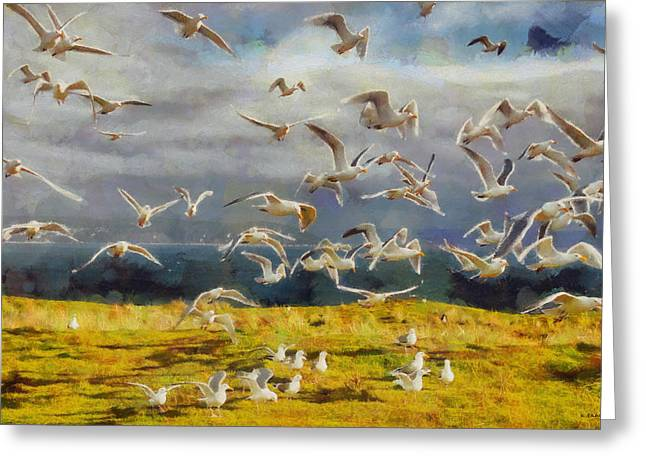 Greeting Card featuring the digital art Seagulls Of Protection Island by Kai Saarto