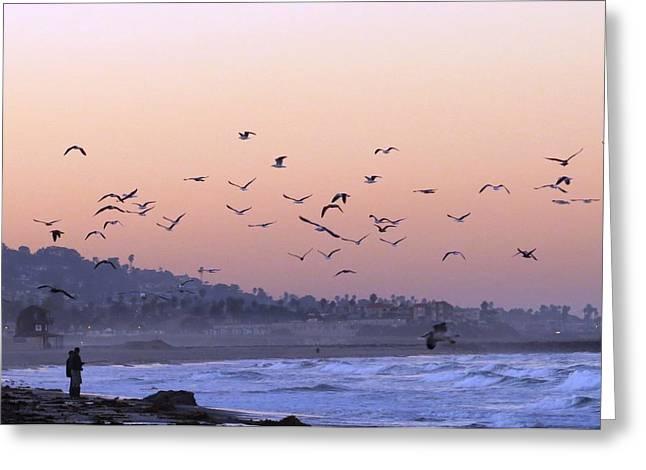 Seagulls Sunrise Greeting Card