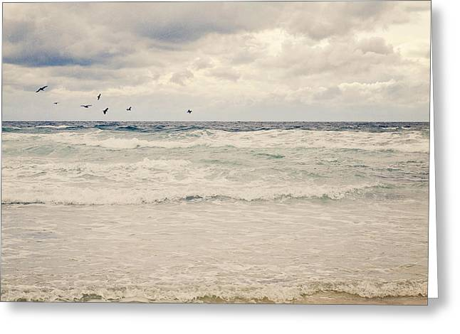Seagulls Take Flight Over The Sea Greeting Card by Lyn Randle