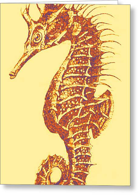 Seahorse - Right Facing Greeting Card by Jane Schnetlage