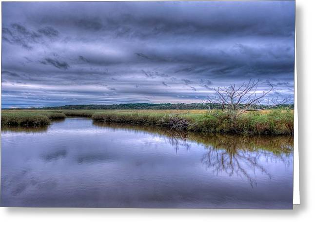 Searching Greeting Card by David Mcchesney