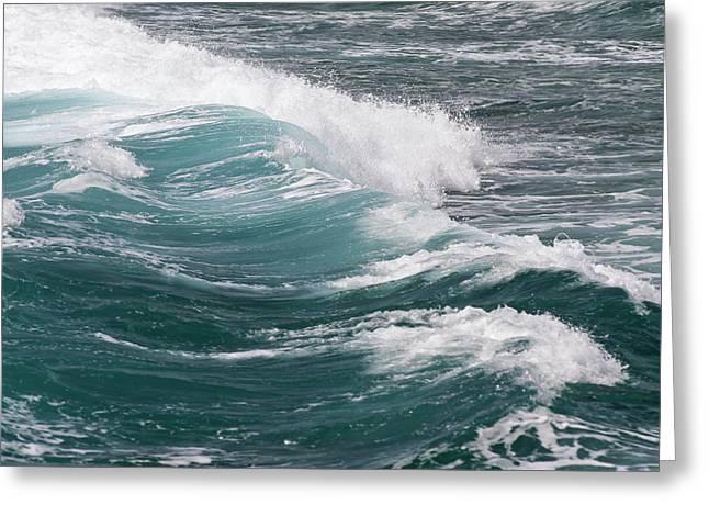 Seascape Greeting Card by Daisy Gilardini
