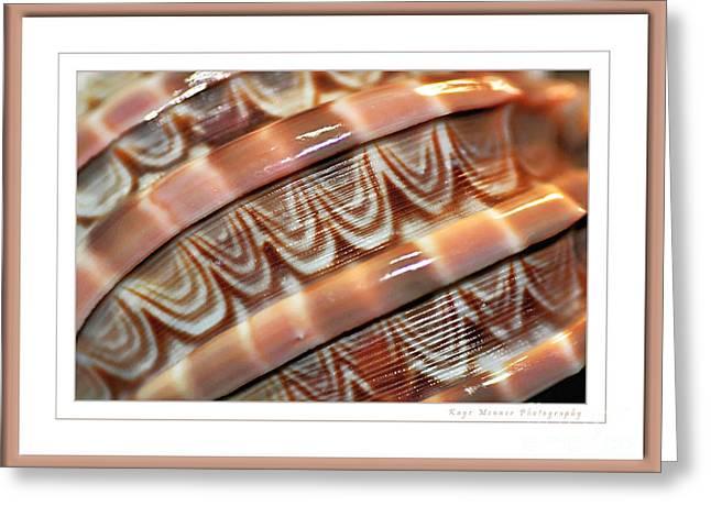 Seashell Abstract 2 Greeting Card by Kaye Menner