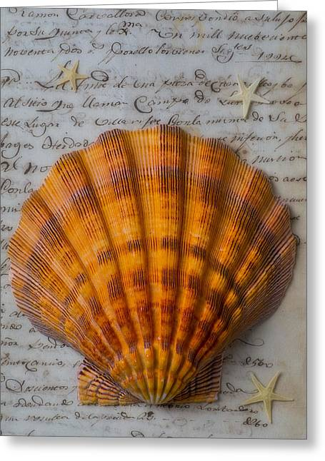 Seashell And Words Greeting Card by Garry Gay