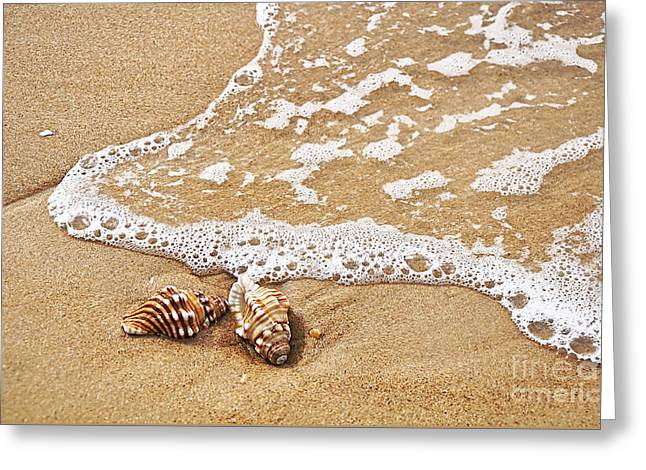 Seashells And Lace Greeting Card by Kaye Menner