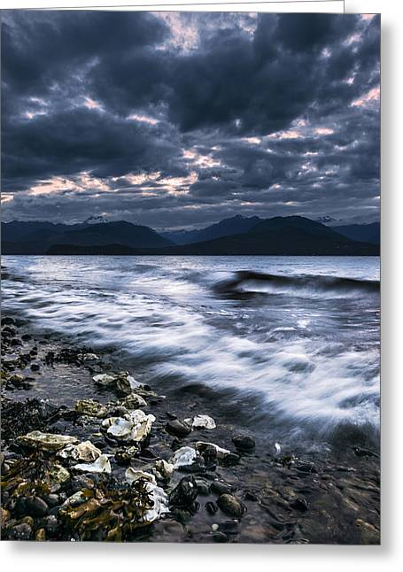 Seashells By The Seashore Greeting Card by Ryan Manuel