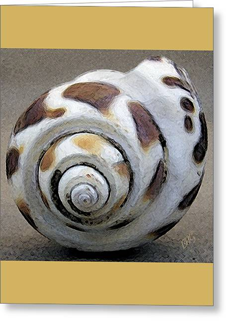 Seashells Spectacular No 2 Greeting Card