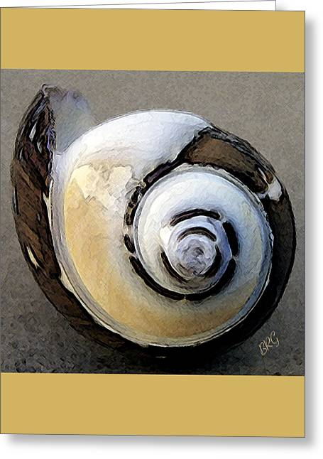 Seashells Spectacular No 3 Greeting Card by Ben and Raisa Gertsberg