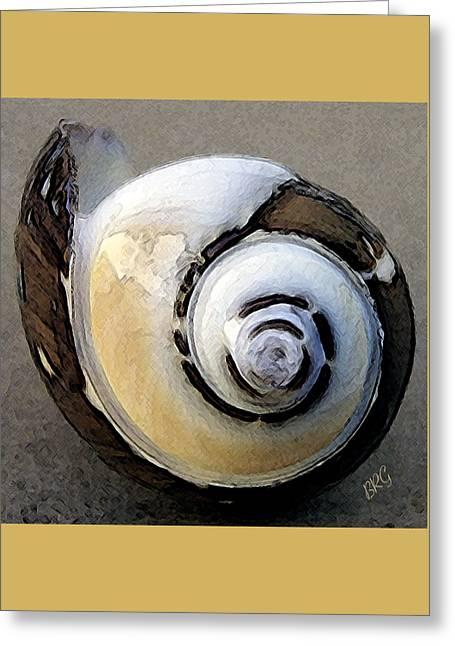 Seashells Spectacular No 3 Greeting Card