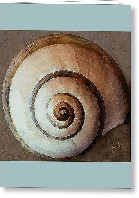 Greeting Card featuring the photograph Seashells Spectacular No 34 by Ben and Raisa Gertsberg