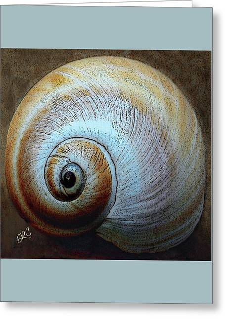 Seashells Spectacular No 36 Greeting Card