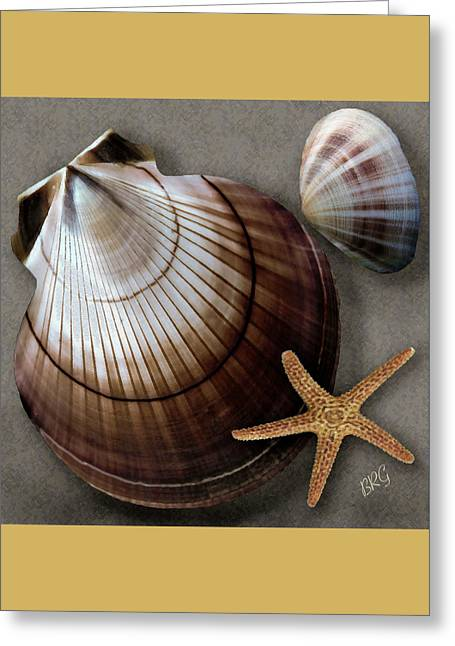 Seashells Spectacular No 38 Greeting Card by Ben and Raisa Gertsberg