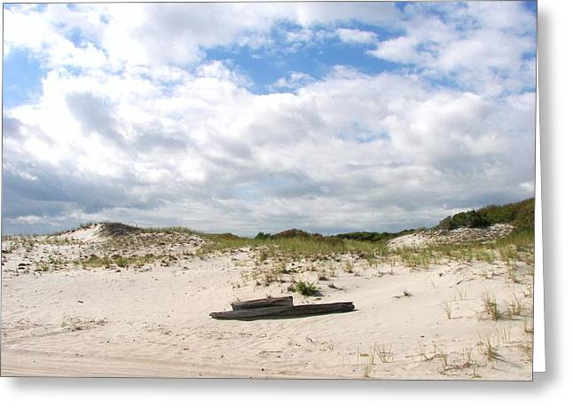 Greeting Card featuring the photograph Seaside Driftwood And Dunes by Pamela Hyde Wilson