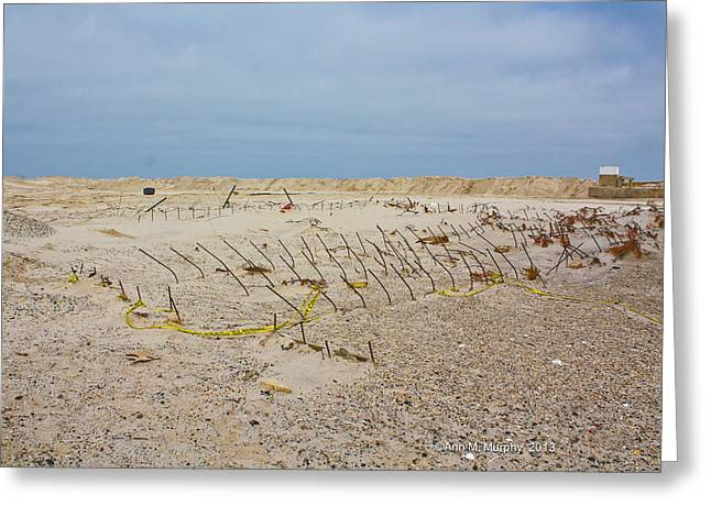 Seaside Heights...beyond The Dunes. After Hurricane Sandy Greeting Card by Ann Murphy