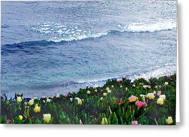 Seaside Ice Plants Greeting Card by Elaine Plesser