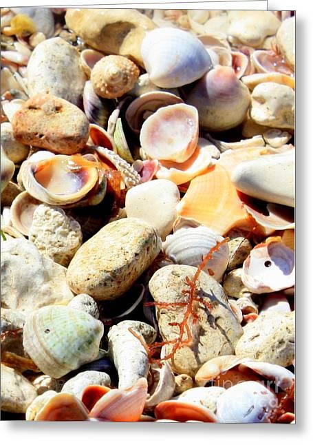 Seaside Memories Greeting Card by Carol Groenen