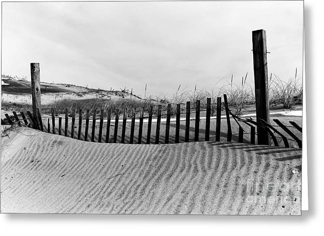 Seaside Park Dune Mono Greeting Card by John Rizzuto