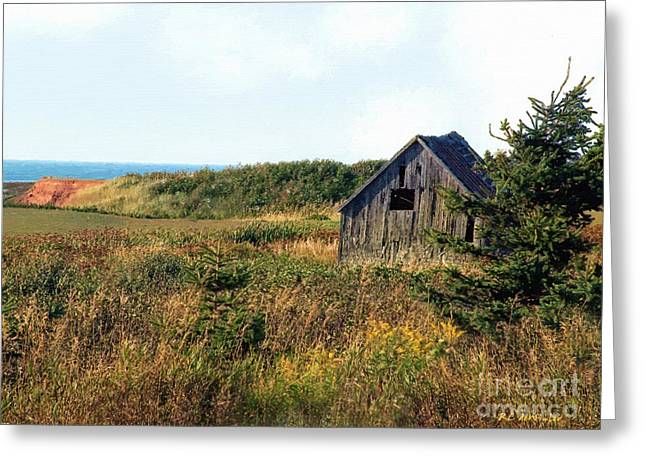 Seaside Shed - September Greeting Card by RC DeWinter