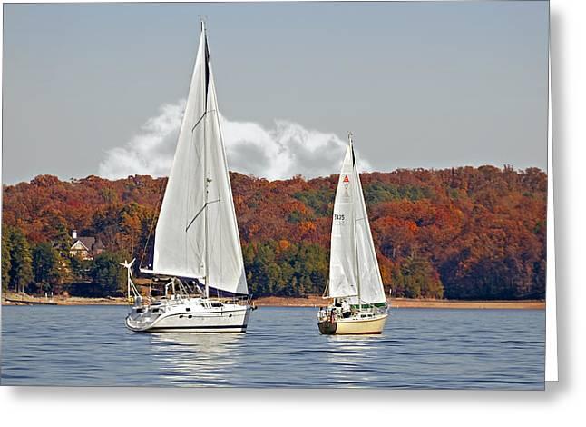 Seasonal Sailing Greeting Card by Susan Leggett