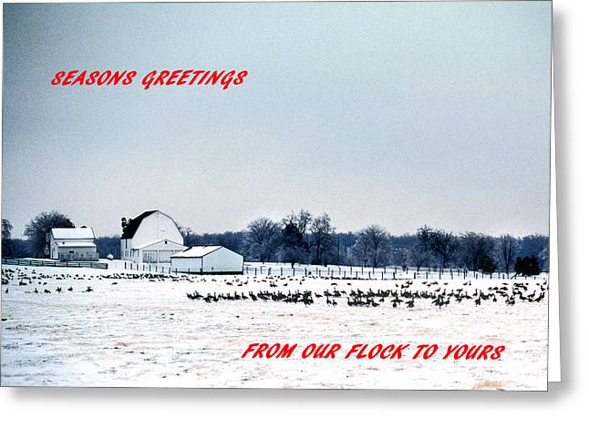 Seasons Greetings Greeting Card by Skip Willits