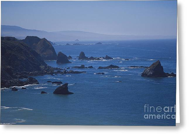 Seastacks Greeting Card by Chris Selby