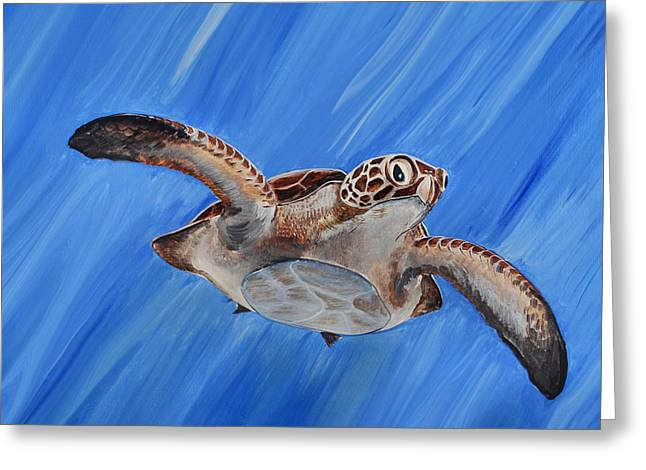 Seaturtle Greeting Card by Steve Ozment