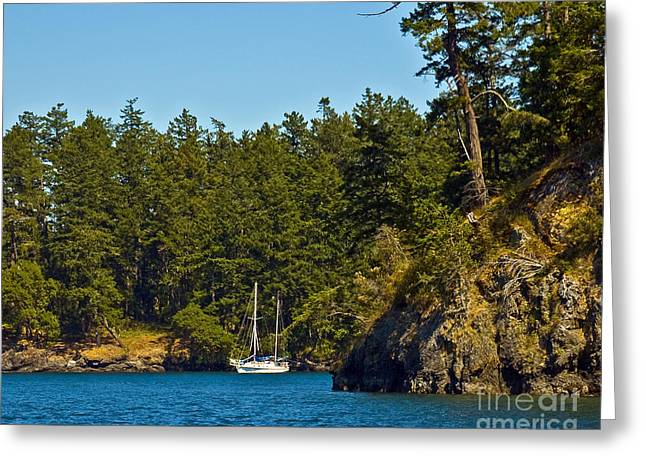 Secluded Anchorage Greeting Card by Chuck Flewelling
