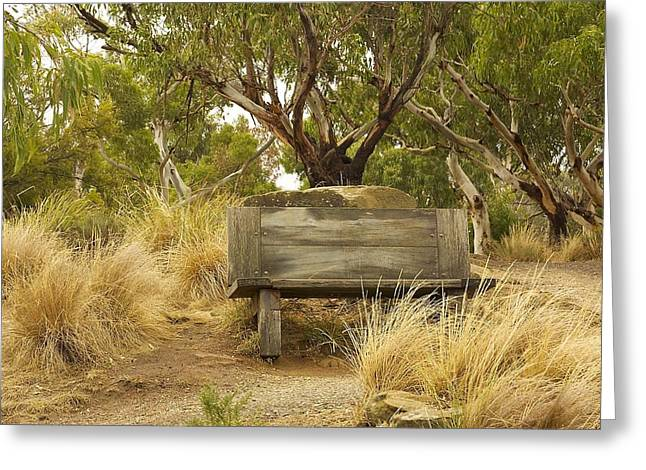 Secluded Bench Greeting Card
