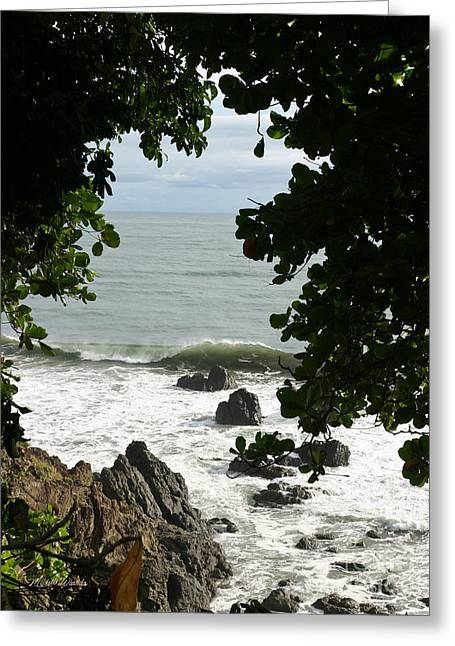 Secluded Shore Greeting Card by Michelle Wiarda
