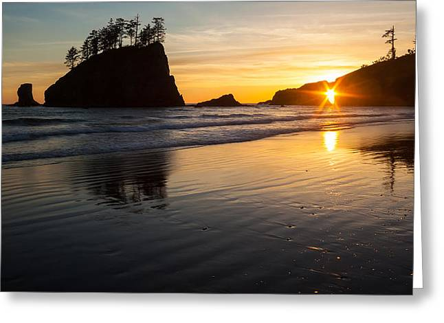 Second Beach Sunstar Greeting Card by Mike Reid
