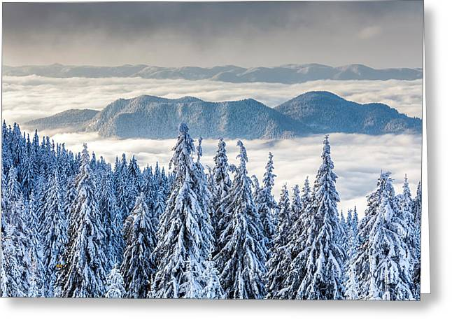 Second Level Greeting Card by Evgeni Dinev