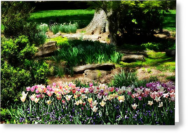 Secret Garden Greeting Card by Ally  White