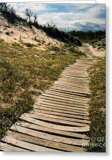 Greeting Card featuring the photograph Secret Path by Gerlinde Keating - Galleria GK Keating Associates Inc