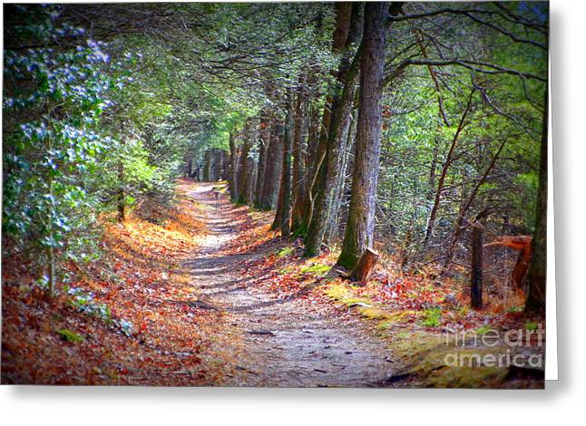 Secret Pathway 1 Greeting Card