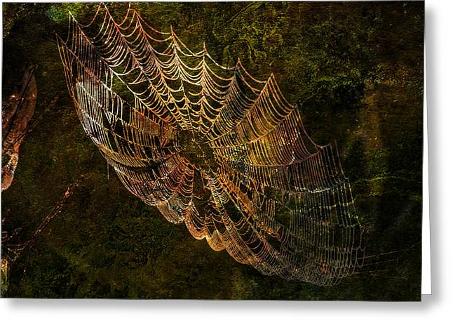 Secret Spider Sanctuary Greeting Card by J Larry Walker