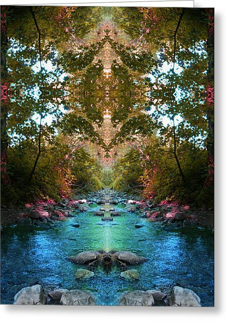 Secrets Of Nature Greeting Card by Tina Vrankar