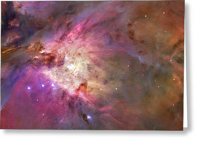 Secrets Of Orion Greeting Card by Ricky Barnard