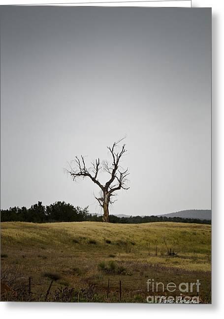 Sedona Landscape No. 3 Greeting Card by David Gordon