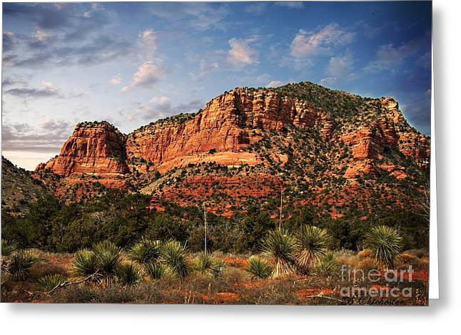 Greeting Card featuring the photograph Sedona Vortex  And Yucca by Barbara Chichester