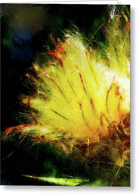 Seedburst Greeting Card