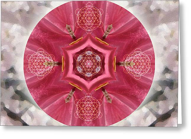 Seeds Of Transformation Greeting Card