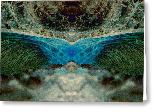 Seedwings Greeting Card by WB Johnston