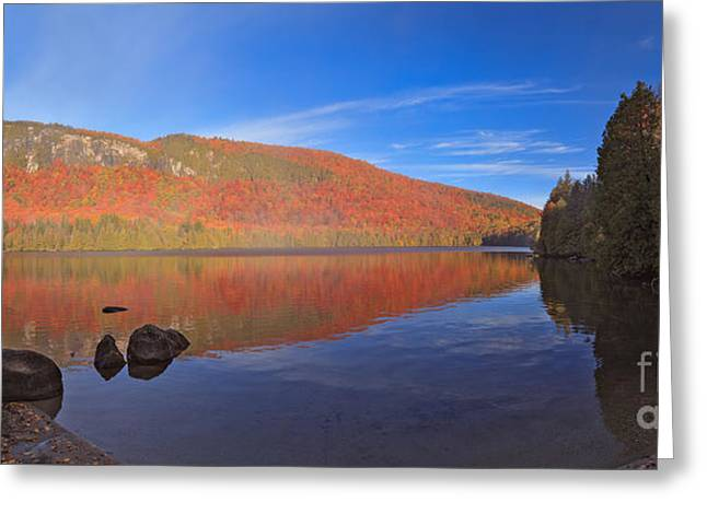 Seeing Red At Jobs Pond Greeting Card