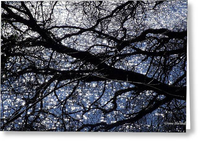 Seeing Stars Greeting Card by Donna Blackhall